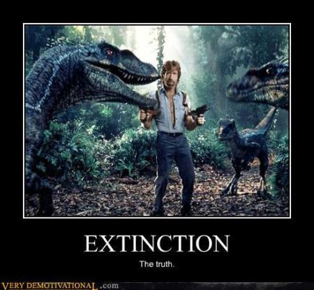 Chuck Norris Extinction