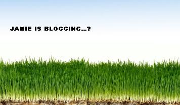 JamieBlog