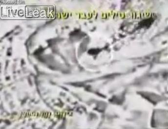 IDFed1