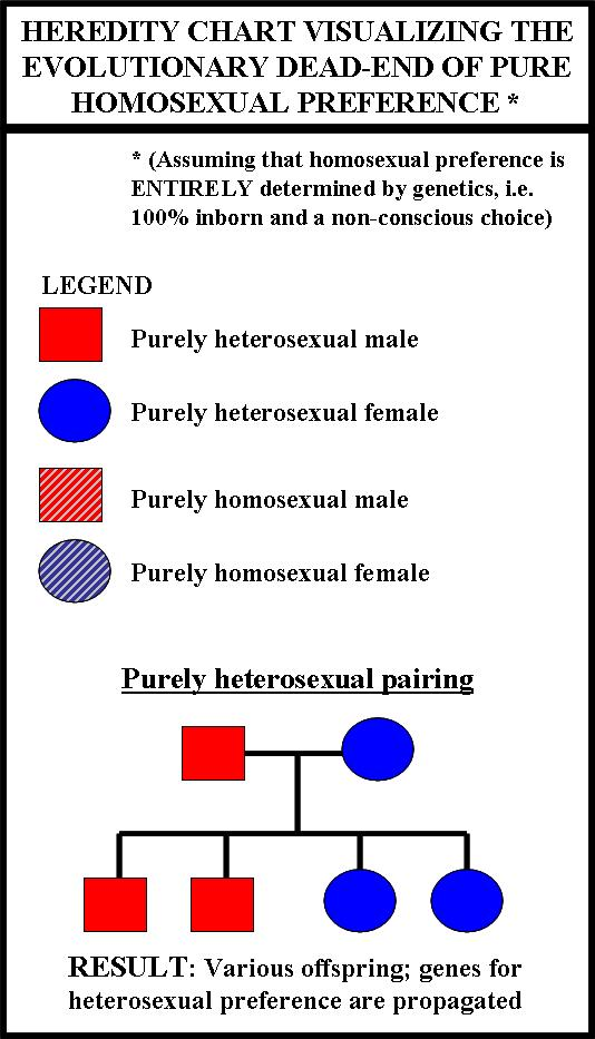 Evolution disproves homosexuality statistics