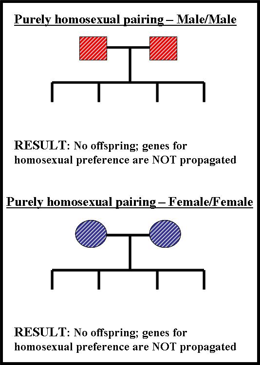 Genetically determined homosexuality statistics