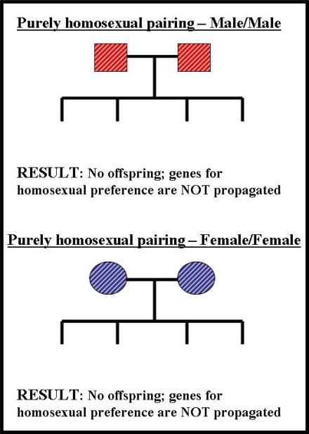 SexPrefHered2