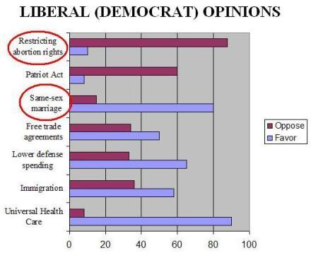 LiberalDemocratOpinions