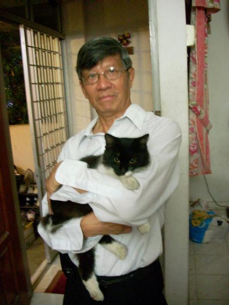 catcat8
