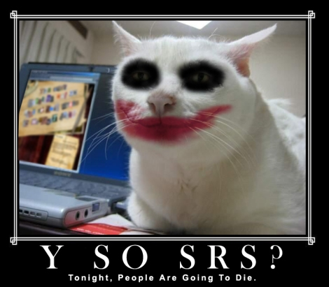 Joker Cat Lolcat Why So Serious Cat