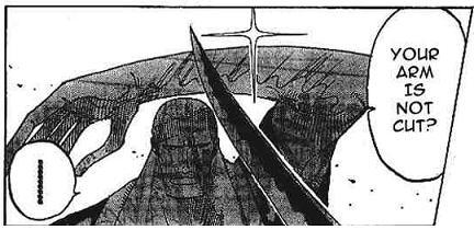 Roronoa Zoro 3 swords